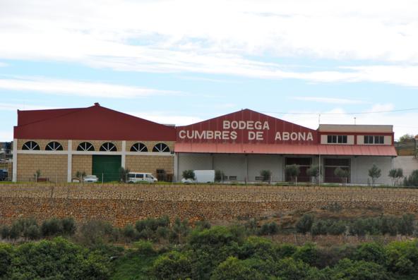 BODEGAS CUMBRES DE ABONA