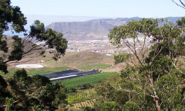 Ruta por Valle de Guerra, Tejina y Tegueste