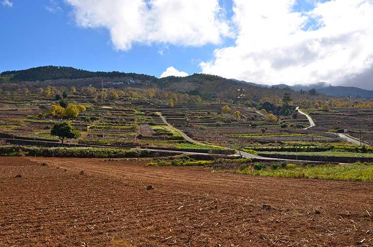 Paysage agricole los Nateros